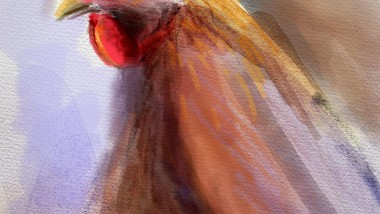 BH_RoosterPainting_01_TOCROP